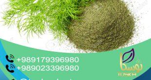 فروش سبزی شوید