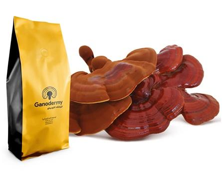 قیمت قارچ گانودرما